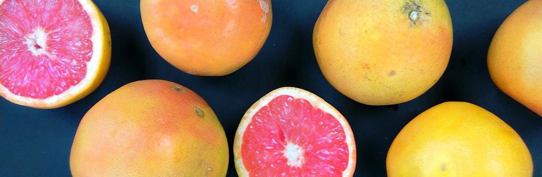 thorpesgrapefruit